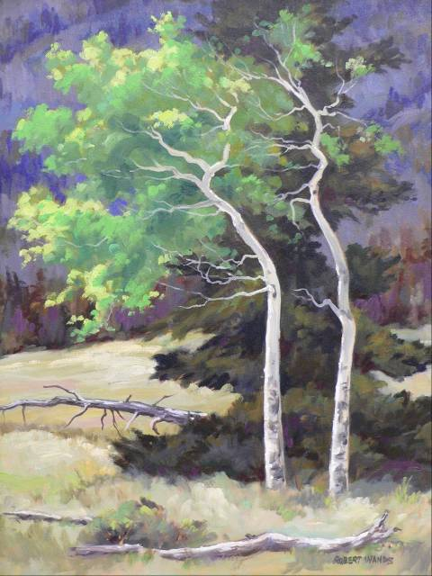 Wind Blown Aspen 20x16 Oil  SOLD